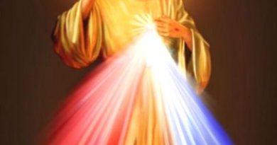 """Vangelo di dm 17 maggio 2020: """"Se mi amate, osservate i miei comandamenti""""."""